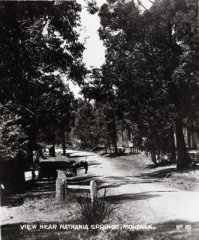 AT-10_Road_near_Nathania_Springs_C1930s.jpg