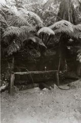 E-6_Nathania_Springs_-_Wishing_Well_C1915.jpg